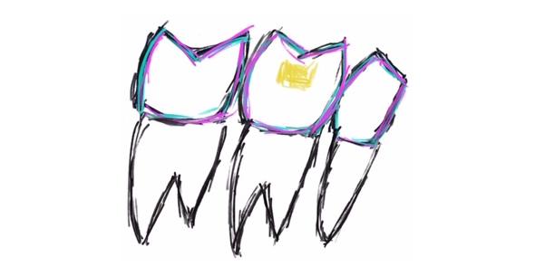 Restorative Dentistry At Durrheim And Associates Dental Clinic In Marlborough NZ